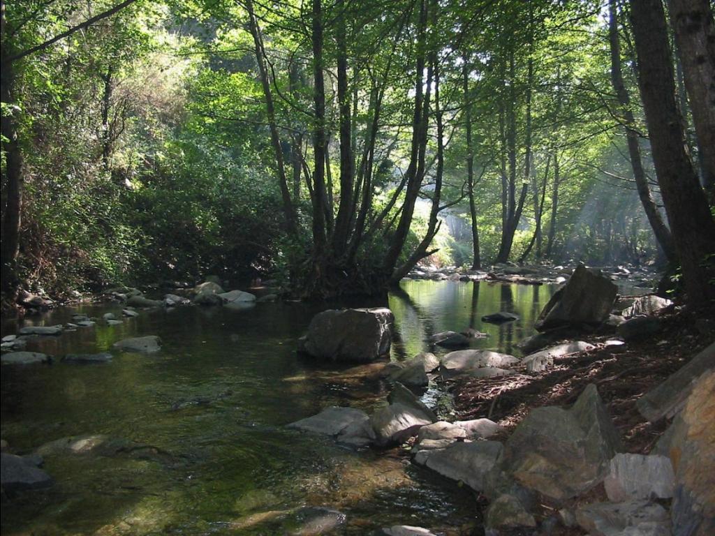 Parc Natural del Montseny senderisme